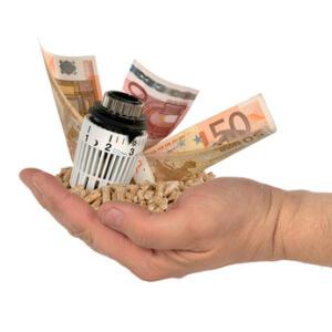 Pelletpresse Geld Sparen